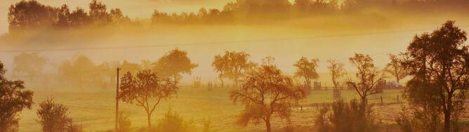 Lokalne mgły w Polsce. Ograniczają widzialność od 100 m do 800 m