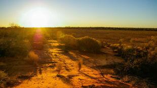 W Australii możliwe 50 stopni Celsjusza