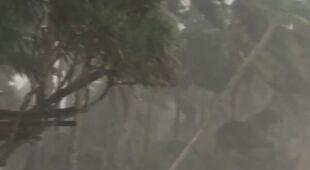 Tajfun niósł silny wiatr i ulewny deszcz